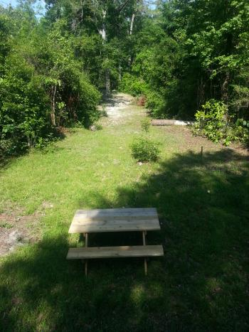 Back Yard path to River